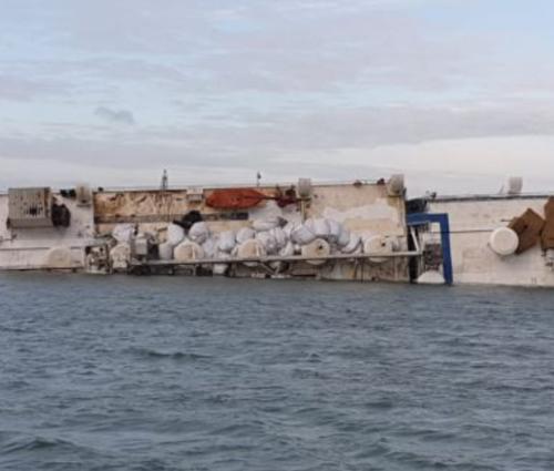 O navă cu 14.000 de berbecuți s-a răsturnat la Midia